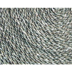 Dry Twigs Place Mat